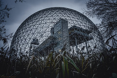 Fall Biosphere (colin.surprenant) Tags: montreal biosphere fall geodesic dome buckminsterfuller