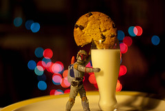 170/365 aka Boba Fett Loves Milk & Cookies (Bradley Nash Burgess) Tags: food cookies 35mm project toy toys actionfigure milk starwars nikon bokeh chocolate actionfigures snack bobafett chip boba 365 nikkor f18 munch munchies afs chocolatechip empirestrikesback returnofthejedi dx fett chocolatechipcookie milkandcookies project365 d80 nikond80 365project nikonafsdxnikkor35mmf18 toysandfood toyandfood