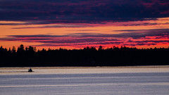 Returning (A Be) Tags: ocean pink blue trees sunset clouds boat purple dusk pacificocean tofino treeline middlebeachlodge