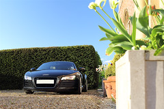 Audi R8 (Duncan's Photography) Tags: cars car canon photoshoot automotive audi supercar supercars r8 1740l 5d3