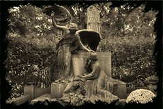 Cimetire des anges (NoireRose) Tags: friedhof nikon kln engel flickrandroidapp:filter=none