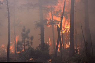Wildfire in the Pacific Northwest