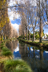 On a Still Autumn Day (Jocey K) Tags: city autumn trees newzealand christchurch sky plants tree leaves architecture clouds buildings reflections river shadows may nz cbd avon