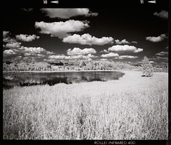 Lake (tsiklonaut) Tags: sky bw film grass contrast rollei analog landscape ir blackwhite estonia pentax drum tmax scanner dream scan developer 400 infrared roll medium format dreamy analogue 6x7 67 eesti grassy drumscan pmt   infrapuna fotograafia   photomultipliertube scanview scanmate