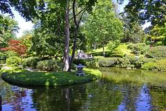 Japanese Gardens (Texas Flyer) Tags: flowers plants fish playing girl fun kid spring scenery child vegetation botanicalgardens fortworth misso texasflyer nikond3100 fauxniece