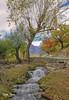 Autumn in Skardu (Max Loxton) Tags: pakistan nature beautiful natural pakistani yasirnisar beautifulpakistan pakistaniphotographers pakistaniphotographer pakistaniphotographersgroup maxloxton pakistaniat pakistaniphotograhers theotherpakistan thevibrantcolorsofpakistan yasirnisarphotography