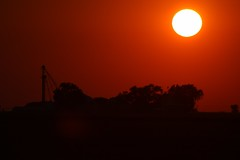 An evening sun at Alcona (gsebenste) Tags: sunset illinois goldenhour ancona