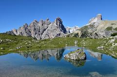 Dolomites reflection (ladigue_99) Tags: italy alps reflections mirror italia day hiking hike clear alpen tarn riflessi alpi trentino dolomites specchio laghetto veneto misurina lakelet dolomitidisesto ladigue99 provinciadibelluno