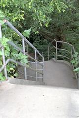 チビチリガマ 画像6