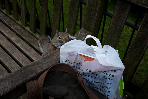 Are u hiding something in the bag? ©  Still ePsiLoN
