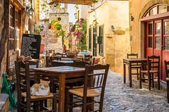 Monemvasia, Greece (George Plakides) Tags: street flower cat table restaurant chair holidays bougainvillea greece monemvasia