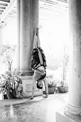 IMG_1593ChristineHewitt_YogicPhotos (yogicphotos) Tags: blackandwhite bw woman india house yellow vertical female carpet photography support photographer purple indian traditional mat oldhouse aubergine balance handstand inversion practice mysore sari asana iyengar adhomukhavrksasana christinehewitt arundhati shala indianwoman yogashala wovenmat yogaphotography supportedhandstand yogicphotos