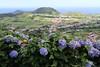 Flamengos, Ilha do Faial (twiga_swala) Tags: prados matos pastos pastagens pastagem ilha faial island azores landscape scenery portugal açores azul cabeço