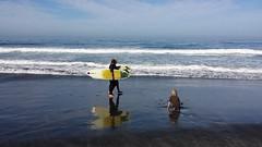 La Jolla (Bart_2006) Tags: beach san diego lajolla