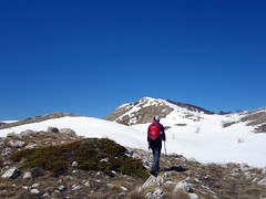 """Passing heather on the flanks of Monte Orsello • <a style=""""font-size:0.8em;"""" href=""""http://www.flickr.com/photos/41849531@N04/17357461916/"""" target=""""_blank"""">View on Flickr</a>"""