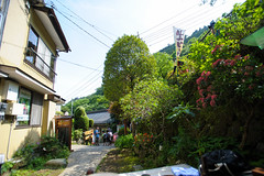 20150517-DS7_9822.jpg (d3_plus) Tags: street sky food mountain nature japan trekking walking lunch spring scenery bokeh outdoor hiking fine wideangle daily alcohol  streetphoto  kanagawa    dailyphoto    thesedays superwideangle     fineday     tamron1735  ooyama  a05    tamronspaf1735mmf284dildasphericalif  tamronspaf1735mmf284dildaspherical d700    nikond700 tamronspaf1735mmf284dild tamronspaf1735mmf284  nikonfxshowcase mountooyama