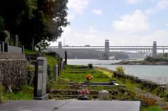 Church Island (Phil Beard) Tags: cemetery churchisland anglesey menaistrait wales bridge britanniabridge
