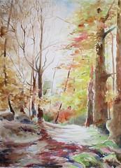 Groupe défiaqua. Octobre 2016 (geneterre69) Tags: aquarelle watercolor arbres automne forêt