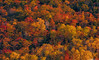 Fall Colors at Lake of the Clouds #4 (Matt Anderson Photography) Tags: michigan landscape usa porcupinemountainswilderness upperpeninsula aerialview autumn bush cliff cloudsky cloudscape colorimage cumuluscloud extremeterrain famousplace hiking horizontal lake leaf lushfoliage majestic midwestmulticolored naturallandmark nopeople outdoors photography reflection rollingsaturatedcolor tranquilscene vacations vibrantpanoramic tree forest beauty environment environmentalconservation highanglenature northamerica plant plantpart ruralscenics season theworld tourist tranquility wilderness woodland wyoming mountain grandteton tetonnationalaspenfishing jacksonhole river traveldestinations mountainrange oxbowbend reflectioncamping adventure canoeing day symmetry scene mattanderson porcupinemountainswildernessstatepark