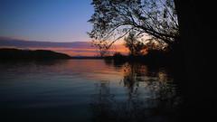 Autumn Dam (Danijelka) Tags: autumn dam lake leaves trees beauty view dusk twilight clouds cozy moment feeling beautifulnature nature