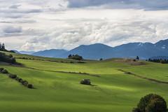 Valley - Janska Dolina (Miroslava Balazova LAZAROVA) Tags: forest nature landscape beauty slovakia janska dolina valley clouds sky mountain