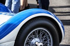 Curve (PAJ880) Tags: maserati tipo 61 detail race car lime rock park ct birdcage sports italian historics