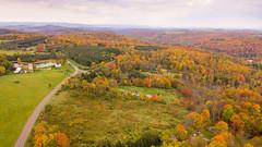 DJI_0074 (James Borden) Tags: endless mountains pa fall foliage susquehanna county wyoming