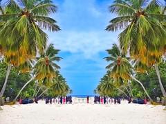 Happy friday  #schaax #Maldives #islandlife #nature #beach #Australia #Japan #Germany #India #America #England #Russia #Moscow #France #SriLanka #Spain #Brazil #Berlin #Italy #Portugal #Turkish #Turkey #Croatia #Singapore #Newyork #Africa #Swede (schaax) Tags: schaax maldives photooftheday nature love australia japan germany india america england russia moscow france srilanka spain brazil berlin italy portugal turkish turkey croatia singapore newyork africa sweden fiji monaco lisbon