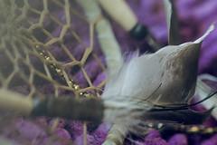Protege tus sueos!! (GLAS-8) Tags: atrapasueos pluma cuenta red violeta talisman amuleto octubre mcarmenverde glas8
