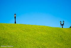 Parque Tangu-23 (AvellarAdonis) Tags: domingo parquetangua sol tangu cwb fds