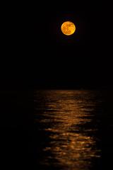 Super Moon 2016 (aliffc3) Tags: supermoon landscape seascape moonlit nikond750 nikkor300mmf4ed mesaieed qatar