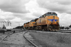 (kenneth.paduano) Tags: colored selectivecoloring blackandwhite houston texas orange railroad train