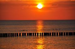 00649 Ostsee Sonnenuntergang (modekopp) Tags: eastsee ostsee fischland dars zingst darss nikond90 d90 nikon 70300