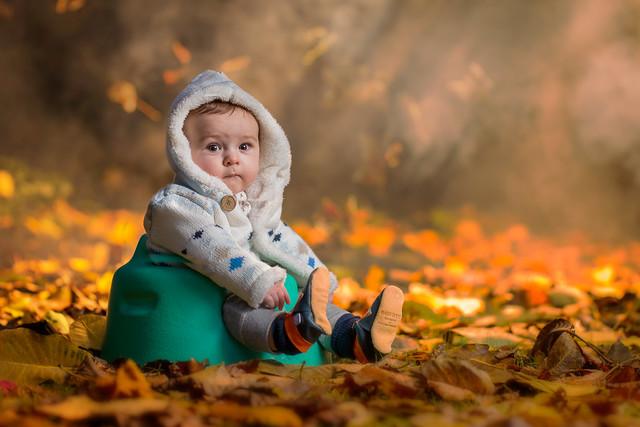 Marlon in the Autumn