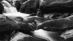 Stream in the Smoky Mountains (dshoning) Tags: stream water blur rocks smokymountains tennessee
