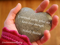 quote-liveintentionally-gratitude-turns-what-we-have (pdstein007) Tags: quote inspiration inspirationalquote carpediem liveintentionally