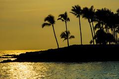 Kona Sunset (DMac Photography) Tags: uncruise hawaii molokai maui lahaina kona