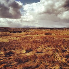 Caithness (nick3216) Tags: cycling scotland email peat bog caithness endtoend morven lejog end2end flowcountry blanketbog
