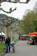 Saturday market (overthemoon) Tags: street flowers trees people dog man girl bicycle shopping 50mm schweiz switzerland spring suisse market candid scooter svizzera quai jogger vevey vaud romandie entredeuxvilles