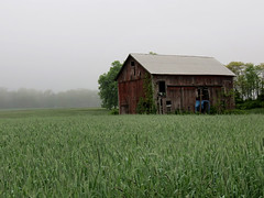 foggy barn and field (natureburbs) Tags: field barn scenic redbarn oldbarn newjerseynature