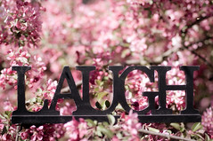 ~ LAUGH~ The earth laughs in flowers.   Ralph Waldo Emerson (Tina M89) Tags: bokeh laugh laughter crabappletree pinkblossoms bokehlicious fullofblossoms