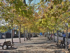 Benches in Autumn (mikecogh) Tags: autumn pretty benches olympicpark shady
