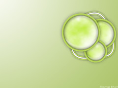 green_wallpapers_0054 (XandeCosta) Tags: wallpaper 1024x768