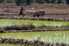 Laos Mékhong