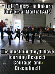 LIKE and SHARE if you agree!!! (ChicoKUMA) Tags: martial arts universal kuma kokoro chicokuma