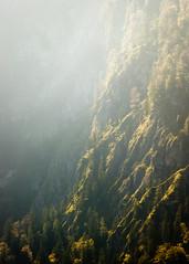 Lightfall (Markus Diedrich) Tags: trees light mountains vertical hillside rockwall •gplus