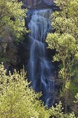 Bridal Veil Falls (Spearfish Canyon, SD) (tieulinhclc - Thanks for 2 million + views) Tags: fall nature water southdakota waterfall nationalpark sd nationalgeographic spearfish simplybeautiful naturebeauty dazzlingshots dlphotography dandlphotography