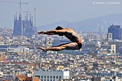 Saltant sobre Barcelona (Perikolo) Tags: world barcelona swimming championship bcn 15 diving campeonato mundo salts natacin saltos campionat trampoln nataci mn 2013 trampol