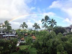 Princeville Rainbow (Shana Brennan) Tags: hawaii rainbow kauai princeville thewestinprincevilleoceanresortvillas uploaded:by=flickrmobile flickriosapp:filter=nofilter