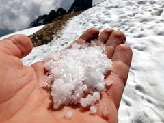 Granatina (Alberto Panizzolo) Tags: rosa alberto neve mano roccia freddo dita marmolada ghiaccio ghiacciaio palmo grinza panizzolo